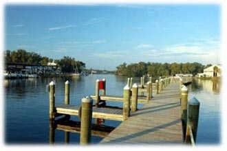 Kings Bay - Crystal River Florida